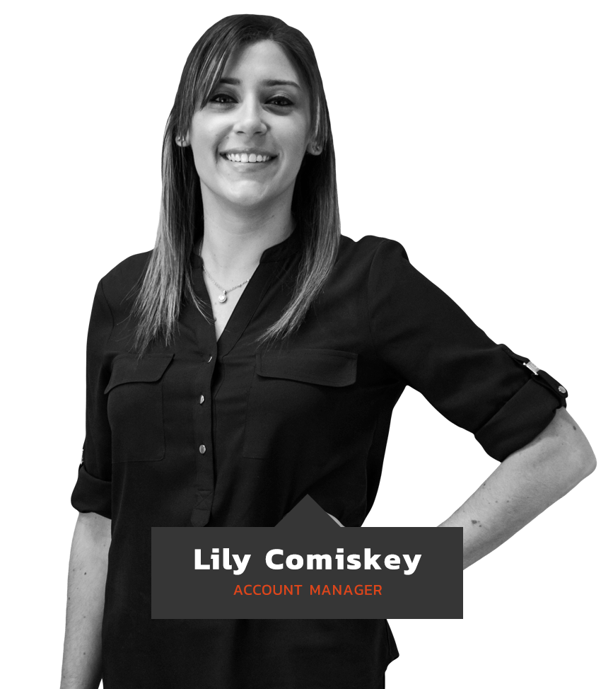 lily comiskey nj marketing account manager